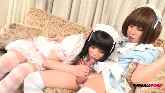 Two different gorgeous Japanese people shemales pounding each other despite the fact that wearing outfits