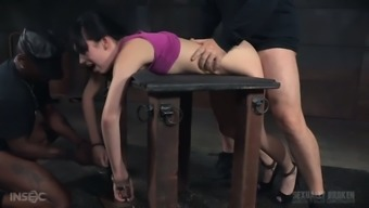 Protesting docile date Aria Alexander needs to understand how BDSM functions
