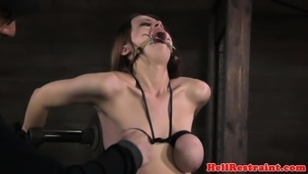 mammary certain substitute gagged and dealt with by dom