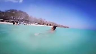 Peruvian horny krown beach