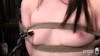 bdsm and attractive babes of perverted thing content