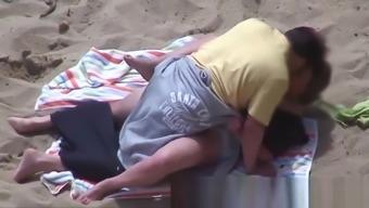 Beach Safaris 22HD